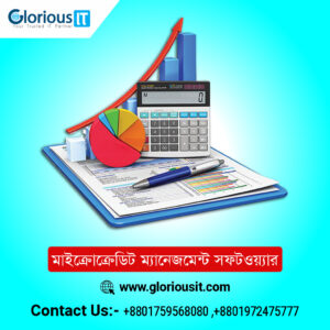 Microcredit Management Software